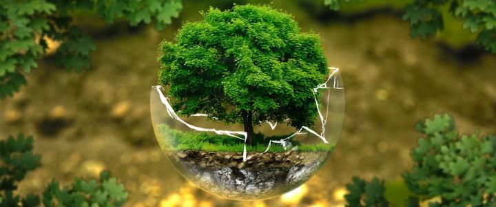 5 czerwca – Światowy Dzień Środowiska